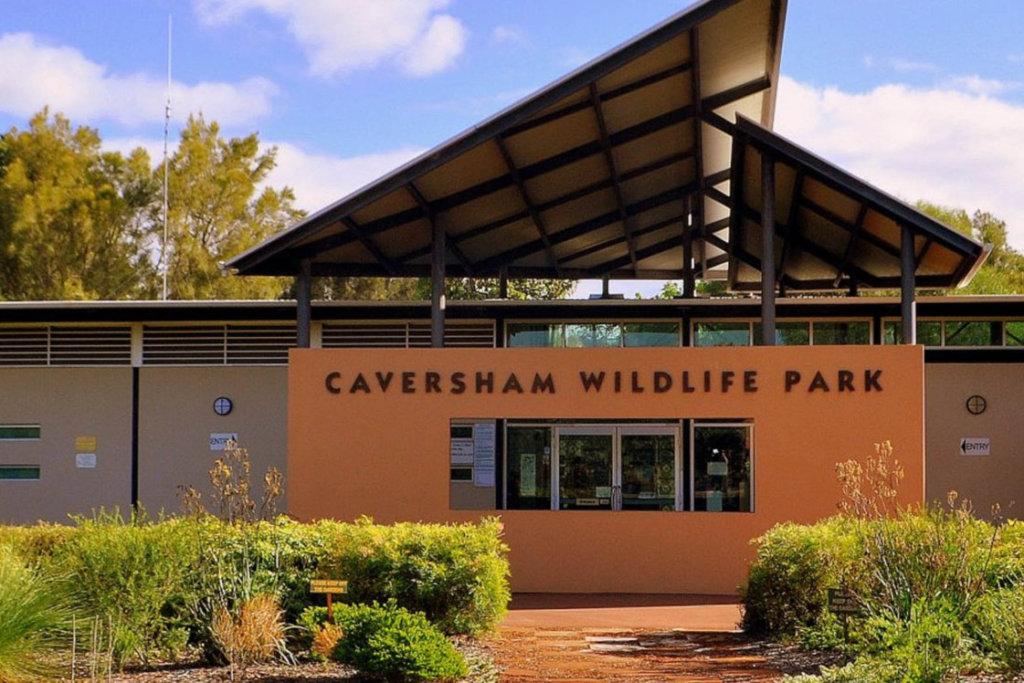 Caversham (1)